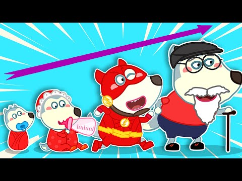 Baby Wolf and Stories for Kids About Fun Competition With Pando   Wolfoo Channel