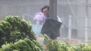 Video Typhoon Hato batters Hong Kong MP3, 3GP, MP4, WEBM, AVI, FLV Mei 2019