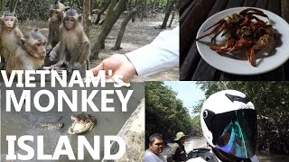 Can Gio Vietnam  City pictures : Vietnam's Can Gio's CRAZY MONKEY ISLAND!