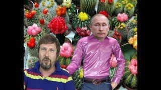 "Кактус исколол Путина за ""Сириус""Facebook - https://www.facebook.com/anatolijsharij VK - https://vk.com/id26867380 Twitter - https://twitter.com/anatoliishariiInstagram - https://www.instagram.com/anatolijsharij Sharij.net - http://sharij.net/"