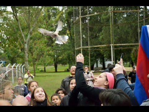 Cerró definitivamente el zoológico de Paysandú