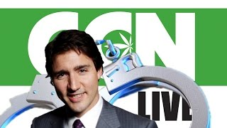 Cannabis Culture News LIVE: Tell Justin Trudeau To Stop The Marijuana Arrests by Pot TV