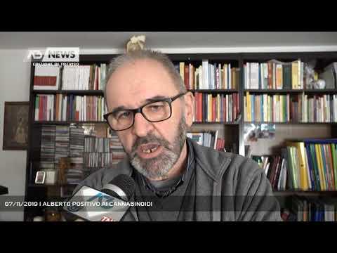 07/11/2019 | ALBERTO POSITIVO AI CANNABINOIDI