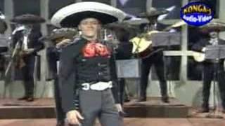 Serenata huasteca  Pedro Fernandez