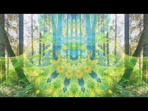 Akasha Experience - Gaia Calling [Music Video]