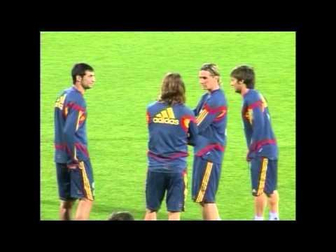 EUFA 2008 : Fernando Torres Injured (видео)