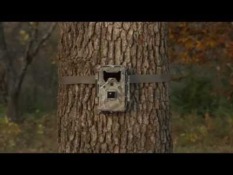 Фотоловушка Bushnell Trophy Cam Aggressor No-Glow