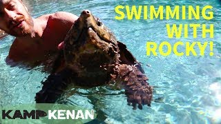 Swimming with an Alligator Snapping Turtle!
