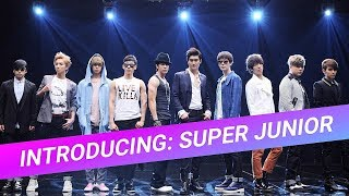 A long ass guide to Super Junior (a bit of crack but actually helpful)