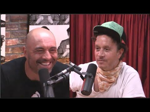 Pauly Shore on Hanging Out with Trump at the Playboy Mansion  - Joe Rogan