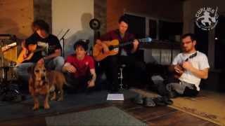 Video Curlies - Že chci zpět - jam - studio (2014)