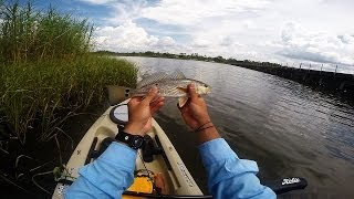 Milton (FL) United States  city pictures gallery : 'Yak Fishing - Rat Reds and a Train! - Milton, FL