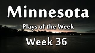 Minnesota Plays of the Week – 36