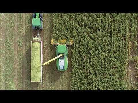 Demonstracja pracy sieczkarni samojezdnej John Deere serii 8000   Agro-Efekt