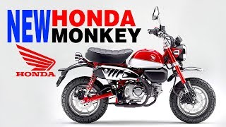 5. New 2018 Honda Monkey 125 | Price in India, Features, Review and Specifications