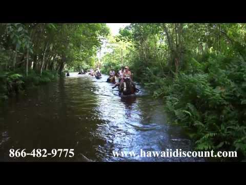 Waipio Valley Horseback Riding with Na'alapa Stables in Big Island, Hawaii
