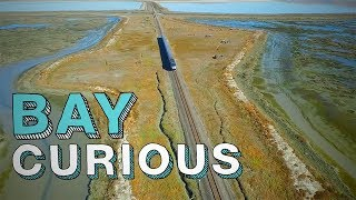 Welcome to Drawbridge: The Bay Area's Last Ghost Town | Bay Curious