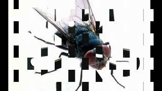 19 May 2011 ... essa música é de 1973, raul seixasufeff ... Danny Ronquillo9 months ago ... hasta nque por fin la encontre esta version es de dj JAIME ENRIQUE...