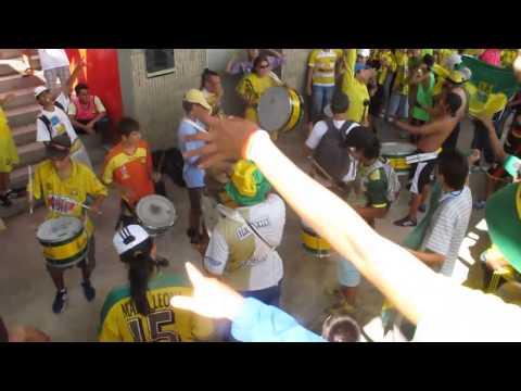 La previa, Fortaleza leoparda sur 2014 - Fortaleza Leoparda Sur - Atlético Bucaramanga