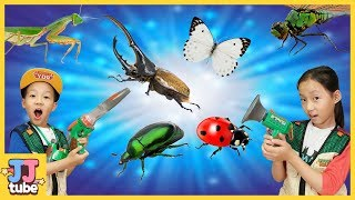 Find an Insect in Backyard. Hide and Seek with Bugs 할아버지 밭에서 곤충채집 놀이 [제이제이 튜브-JJ tube]
