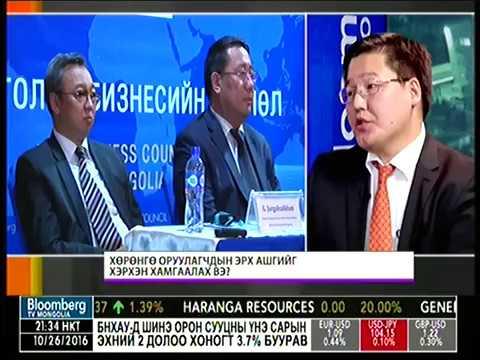 МБЗ: Хөрөнгө оруулагчдын эрх ашгийг хэрхэн хамгаалах вэ?
