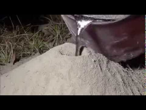 mettere dell'alluminio fuso dentro un formicaio vuoto