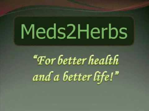Moringa A Powerful Antioxidant