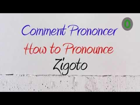 How to Pronounce – Comment Prononcer: Zigoto (Funny guy, Weirdo)