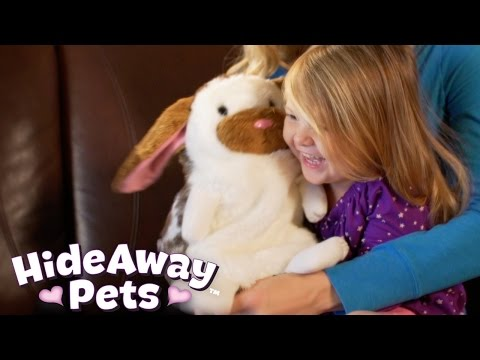 HideAway Pets DR