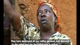 The Dream Of REDD: Underlying Causes Of Forest Degradation&Community Voices On REDD+ - Uganda