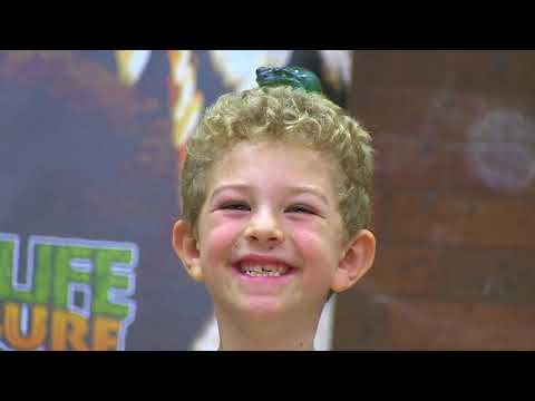 Primary school holiday program video