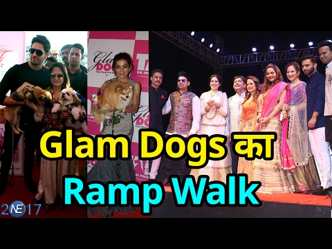 Glam Dog में Bollywood हस्तियां|Smita Thackeray, Arbaz Khan, Sidharta Malhotra