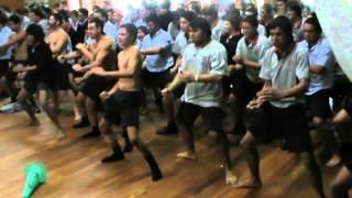 Download Lagu Gisborne Boys' High School House Haka Competition 2013 Tane Mahuta Mp3