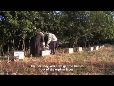 ARISTEAS beekeepers equipment (1/3)