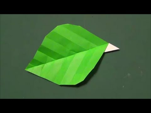 Plant Tutorial - 003 -- Leaf