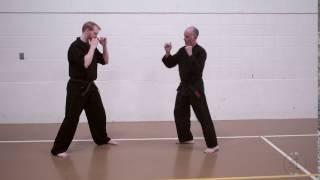 Green Belt Partner Round Kick