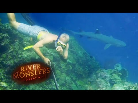 Underwater Spear Fishing | SPECIAL EPISODE! | River Monsters