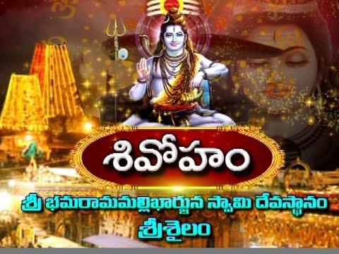 Shivaratri-Special-Sri-Bhramaramba-Mallikarjunaswamy-Temple-in-Srisailam-Vanitha-TV-09-03-2016