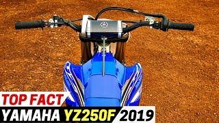 4. TOP Fact 2019 Yamaha YZ250F