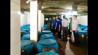 Cụm thi đua Đoàn thanh niên khối thị xã, thành phố: Tham quan mô hình kinh tế tại TP Uông Bí