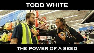 Video Todd White - The Power Seed - Shopping Testimonies MP3, 3GP, MP4, WEBM, AVI, FLV Agustus 2018