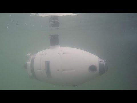 Ρομπότ – ψάρια για την προστασία της λιμνοθάλασσας της Βενετίας – futuris