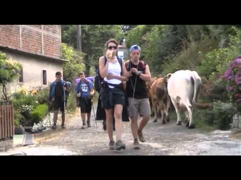Watch videoNosotros también hacemos el Camino