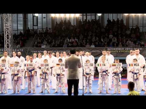 Mistrzostwa Europy Karate Kyokushin - Sosnowiec 2014