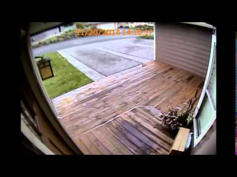 Download Renton Mail Theft HD Mp4 3GP Video and MP3