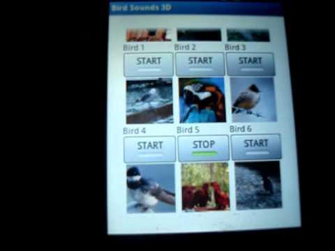 Video of Bird Sounds -3D-