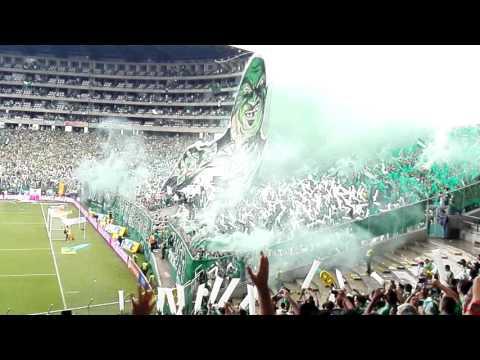 Recibimiento Deportivo Cali vs aBerica | 19 de Marzo 2017 | - Frente Radical Verdiblanco - Deportivo Cali