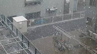 Toyohashi Japan  city images : ang mamakalay snowrain in toyohashi japan