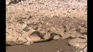 Microcambiamenti: Cava Del Parco Cancelli