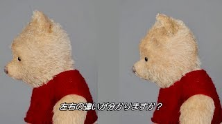 プーからクイズ! どちらがぬいぐるみ? CG?/『プーと大人になった僕』メイキング映像
